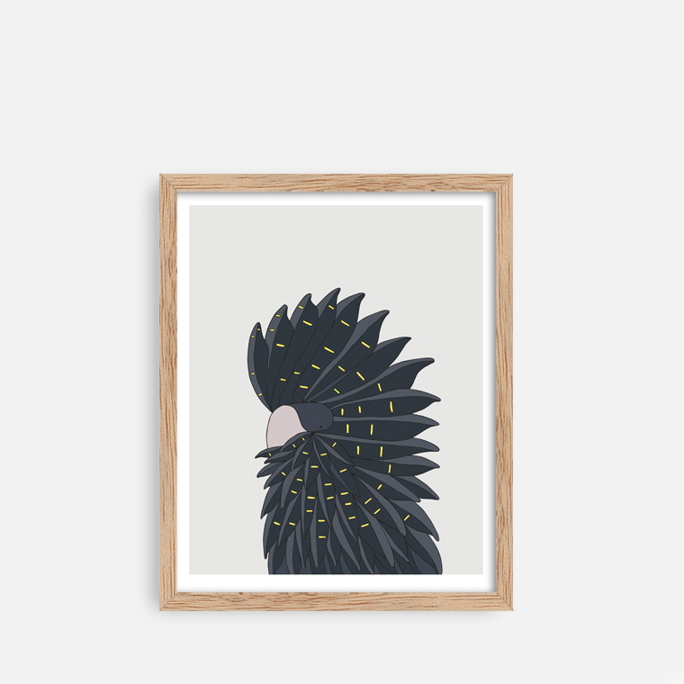 Red Tailed Black Cockatoo - Fine art bird print - Eggpicnic