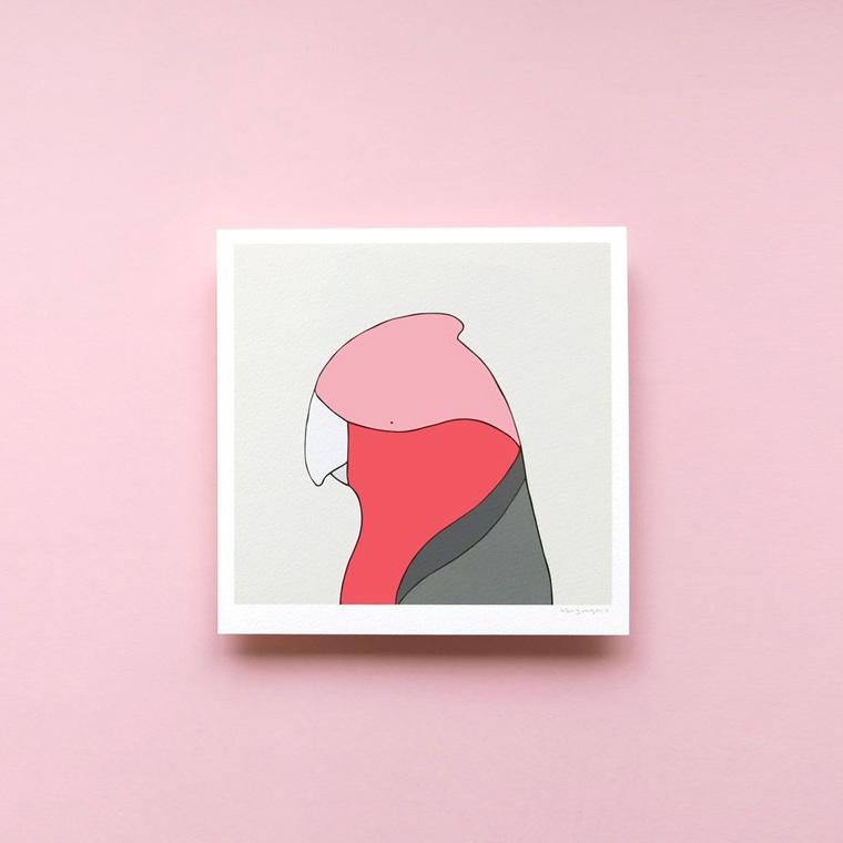 Galah - Fine art bird print framed - Eggpicnic