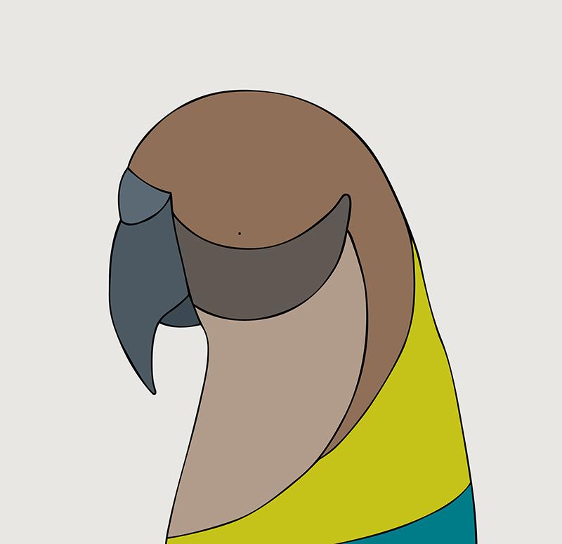 Kea - New Zealand - Fine art bird print - Eggpicnic