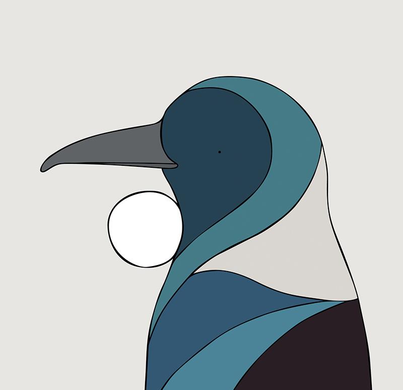 Tui - New Zealand - Fine art bird print - Eggpicnic